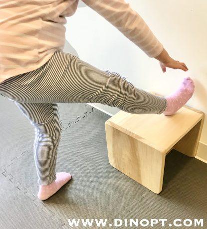 hamstring stretch modified