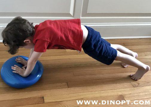 dyna disc plank