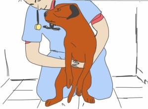 Heimlich grand chien