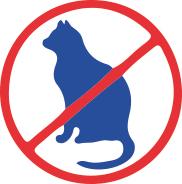 Perméthrine interdite pour les chats