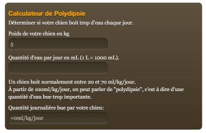 calculateur-polydipsie-chien