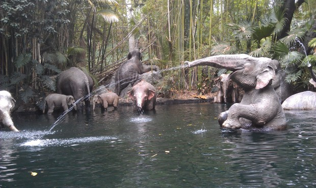 Cute Tumbler Christmass Wallpaper Jungle Cruise Elephant Bathing Pool The Geek S Blog