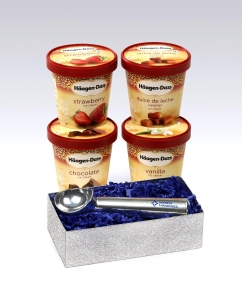 Haagen Dazs Ice Cream from Maple Ridge Farms