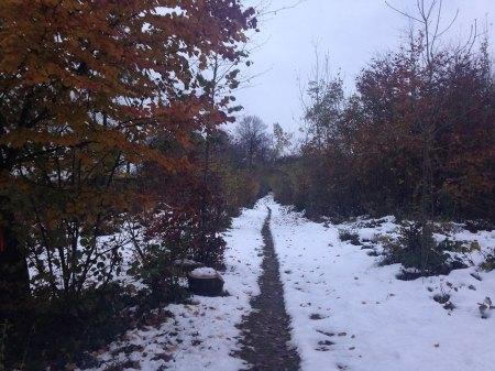 340ème sortie - Sentier enneigé