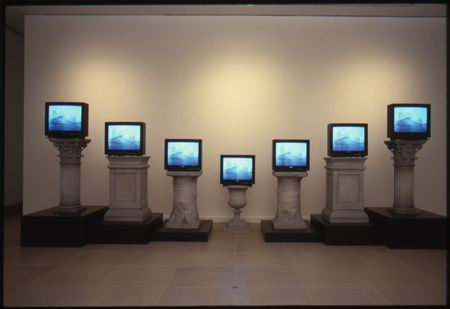 Concentrations 16: Mary Lucier, Wilderness, October 10–November 22, 1987