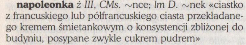 napoleonka w SJPSzym_1995 - 0002