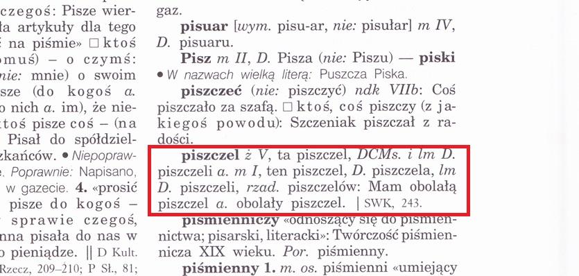 piszczel_WSPP