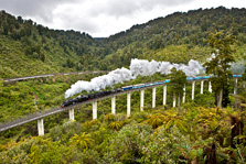 The Hapuawhenua viaduct, with the old viadict in the background. Photo: Natures Pic/Rob Suisted.