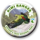 Arthur's Pass Kiwi Ranger badge.