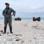 Eigill checking oystercatcher chicks