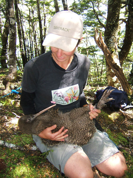 Sacha kneeling on the ground, holding a large kiwi.