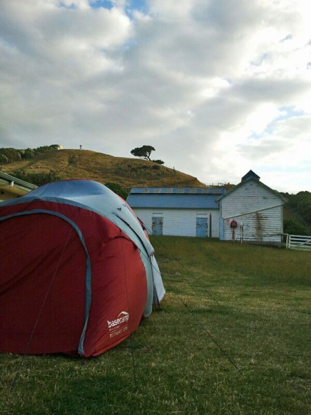 Camping on Matiu Somes Island