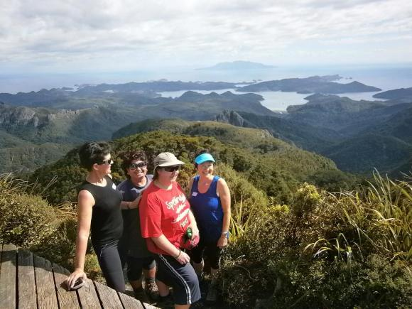 Walkers enjoy the view from Hirakimata Mt Hobson.