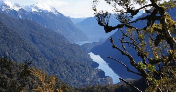 A view of Doubtful Sound.