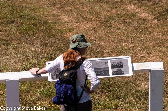 Jenny reading interpretation panels on the island.