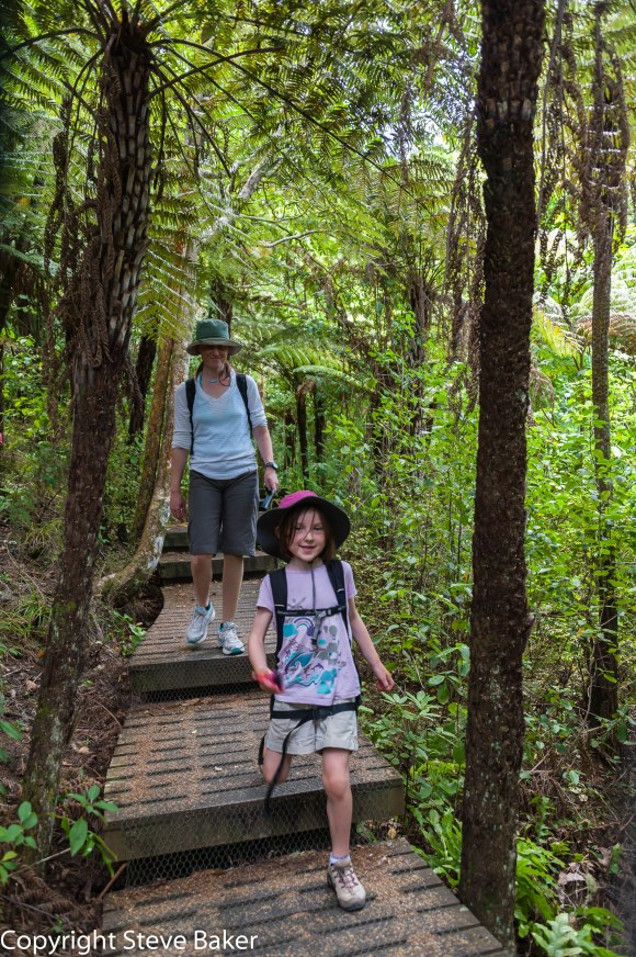 Jenny and Meg walking in the bush.