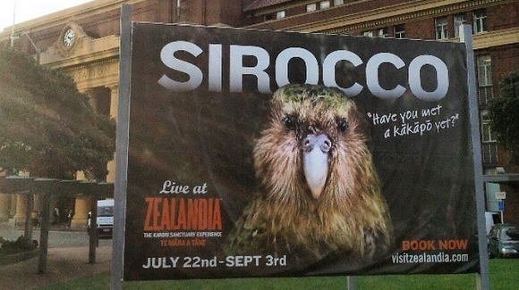 A sign for Sirocco's Zealandia visit at the Wellington Railway Station. Photo by Elizabeth Marenzi.