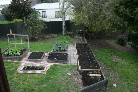 Jane and Magda's backyard.