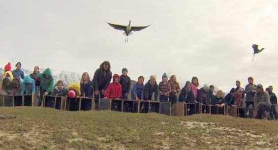School students releasing kakī into the wild.