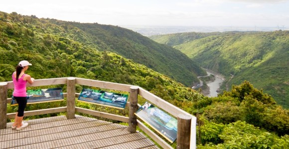 sentinel-lookout-manawatu-gorge-track-alastair-thom
