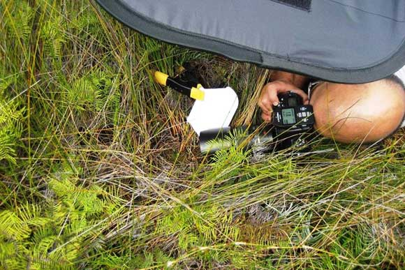 New Zealand Geographic photographer, George Novak, photographing Corybas carsei.