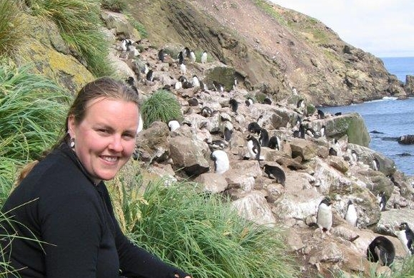 Becs with rockhopper penguins on Campbell Island.
