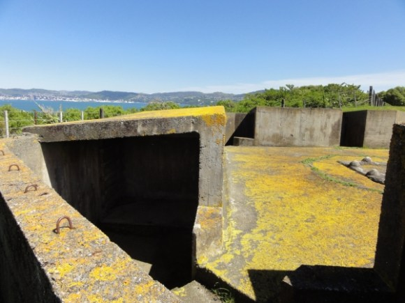 Gun emplacements at the top of Matiu/Somes Island.