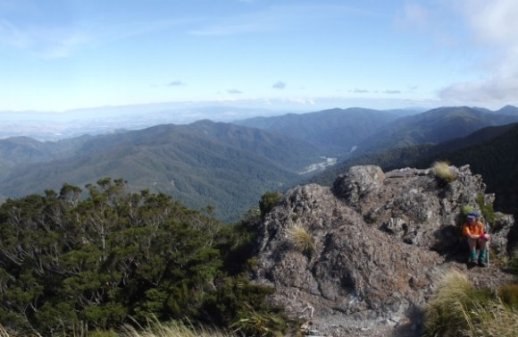 The view along the Mt Holdsworth Jumbo Circuit.