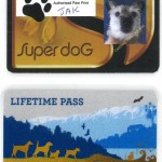 A special Gold Card and Lifetime Pass for Jak.