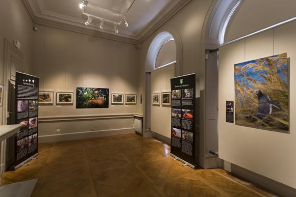 The exhibition inside the Palais du Roi de Rome. Photo copyright Sabine Bernert.