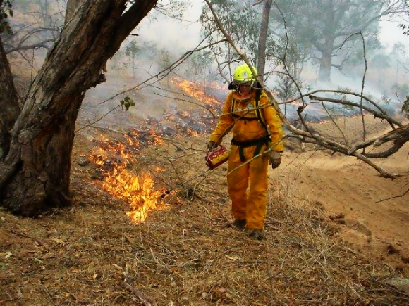 Norm Thornley lighting a  controlled back burn in Victoria, Australia.