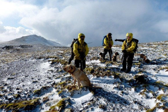 Three men, four dogs, and lots of snow, on Macquarie Island.