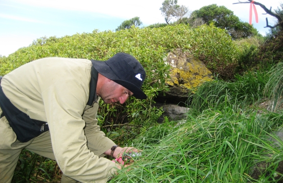 Ranger Barry Atkinson marks the GPS location of a nest.