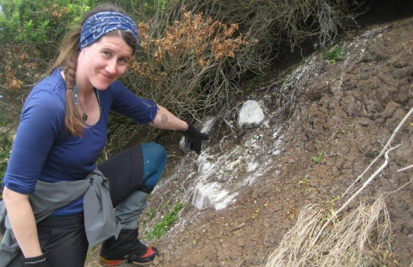 Volunteer points to a trail of penguin poo.