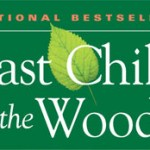 Last Child in the Woods book cover.