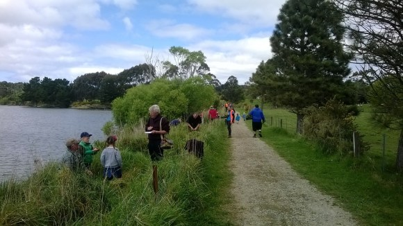 Planting along the banks of the Kakanui River.