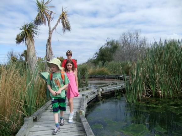 Visiting Ōtukaikino Wetland, Canterbury