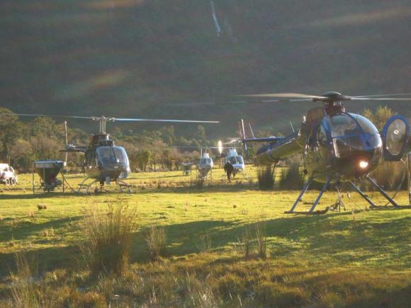 Helicopters preparing for pest control drop on the West Coast.