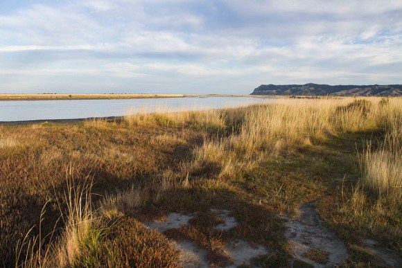 Wairau Lagoons, South Marlborough. Photo: Ricky Wilson | CC BY 2.0.