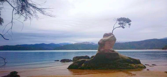 Bay at Abel Tasman National Park.
