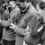 DOC rangers holding three kiwi being released into Rangataua Forest. Photo: Nina Mercer.
