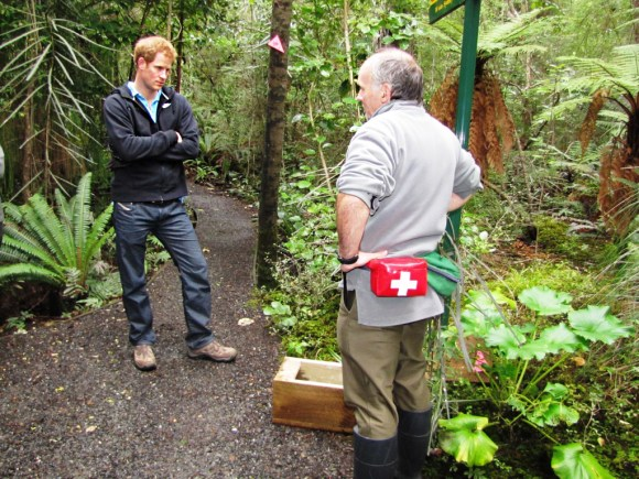 Prince Harry watches a rat trap demonstration by Ranger Phred Dobbins. Photo: Andrea Crawford | DOC.