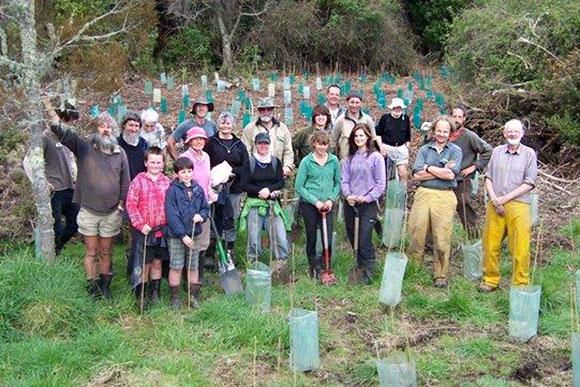 Volunteers planting at Paynes Ford Scenic Reserve.
