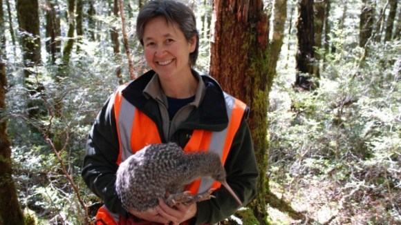 Sandy Yong holding a great spotted kiwi in the Nina Valley.