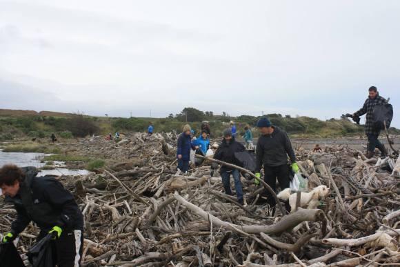 Volunteers combing the Waitara West beach for rubbish. Photo: Taranaki Conservationists.