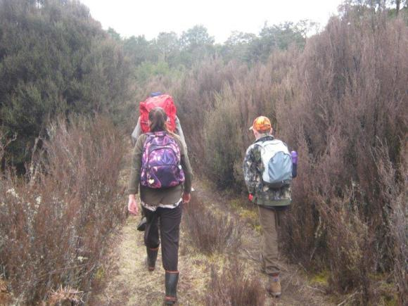 Liam, Siena and Jenny walking into the Rangataua Forest.