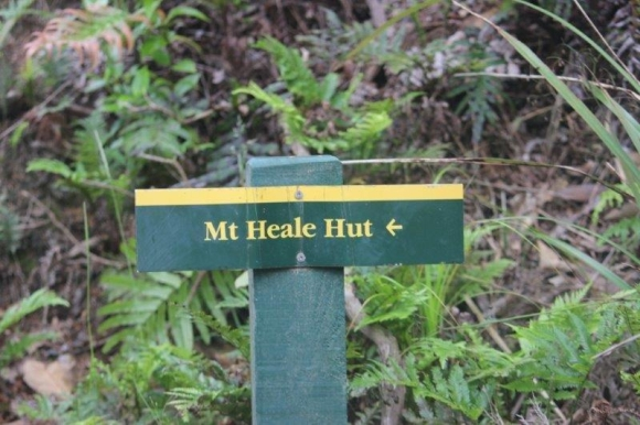 Mt Heale Hut sign.