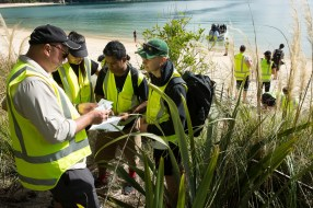 Assessing dune health at Anchorage with Project Janszoon. Photo by Neil McKenzie, Sir Peter Blake Trust