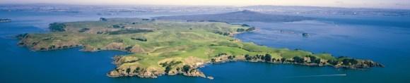 Motutapu Island. Photo: Motutapu Restoration Trust.