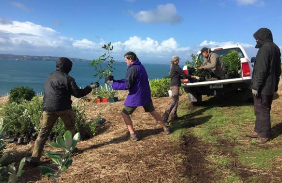 Volunteers on Motutapu Island. Photo: Motutapu Restoration Trust.